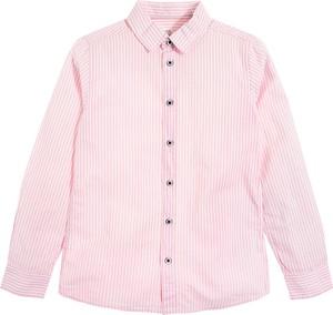 Koszula dziecięca Cool Club z bawełny dla chłopców w paseczki