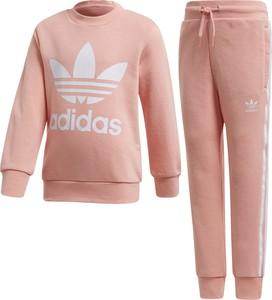 Różowy dres dziecięcy Adidas z dzianiny