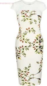 Sukienka Fokus w stylu glamour z tkaniny dla puszystych