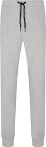 Spodnie sportowe Trussardi Jeans