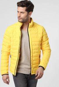 Żółta kurtka Nils Sundström w stylu casual