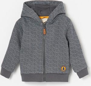 Bluza dziecięca Reserved dla chłopców