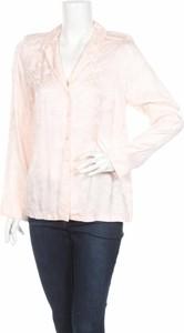 Różowa koszula Kappahl z długim rękawem