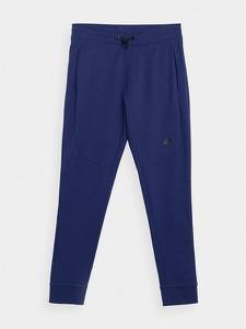 Granatowe spodnie sportowe 4F w sportowym stylu