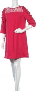 Sukienka Camaieu mini prosta z okrągłym dekoltem