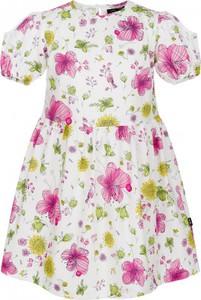 8bc98116 sukienka biała dla dziewczynki 146 - stylowo i modnie z Allani