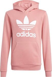 Różowa bluza Adidas z bawełny w młodzieżowym stylu