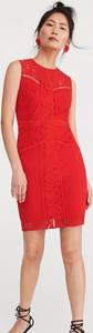 Czerwona sukienka Reserved dopasowana z okrągłym dekoltem