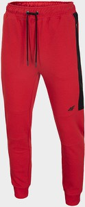Spodnie sportowe 4F z dresówki