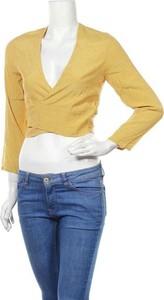 Żółta bluzka Rolla`s w stylu casual z dekoltem w kształcie litery v z długim rękawem