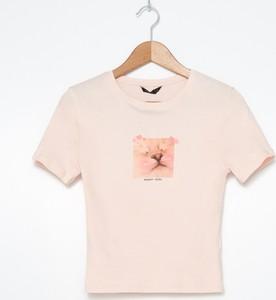 T-shirt House
