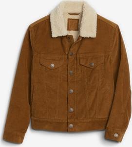 Brązowa kurtka dziecięca Gap z bawełny