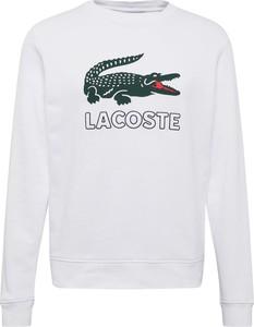 Bluza Lacoste w młodzieżowym stylu z dresówki