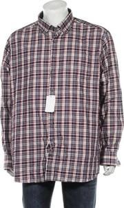 Koszula Haupt w stylu casual z kołnierzykiem button down