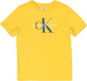Żółta koszulka dziecięca Calvin Klein