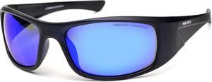 Okulary polaryzacyjne ARCTICA S 311 A