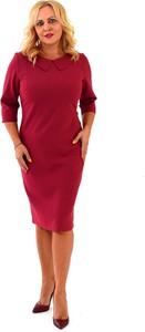 Czerwona sukienka Roxana - sukienki z długim rękawem ołówkowa z kołnierzykiem