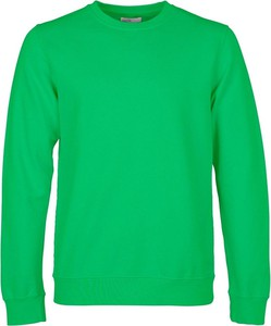 Sweter Colorful Standard