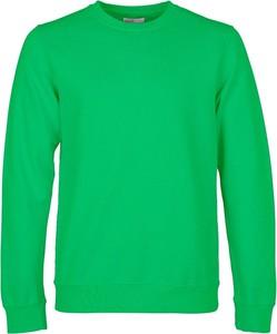Sweter Colorful Standard w stylu casual z wełny z okrągłym dekoltem