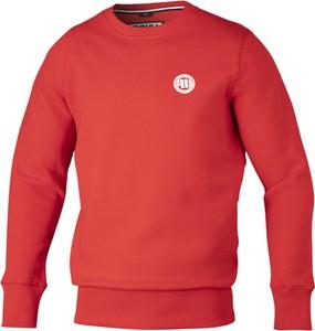 Czerwona bluza Pit Bull West Coast z weluru