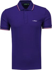 Granatowa koszulka polo Chervo w stylu casual