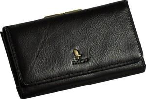 Brązowy portfel PUCCINI