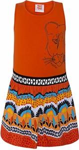 Sukienka dziewczęca amazon.de z dzianiny
