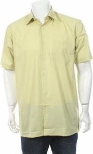 Zielona koszula Taurus