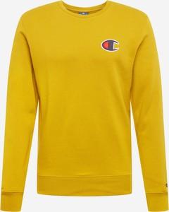 gorące wyprzedaże szukać najwyższa jakość Żółte swetry i bluzy męskie Champion, kolekcja jesień 2019