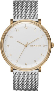 Zegarek SKAGEN - Hald SKW6170 Silver/Gold
