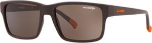 Okulary Przeciwsłoneczne Arnette AN 4254 Dashanzi 254473