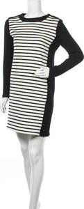 Sukienka Petit bateau z okrągłym dekoltem w stylu casual mini