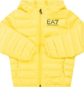 Żółta kurtka Emporio Armani