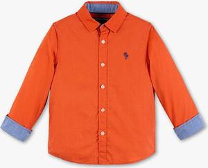 Koszula dziecięca Palomino
