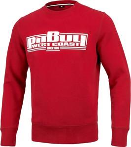 Czerwona bluza Pit Bull
