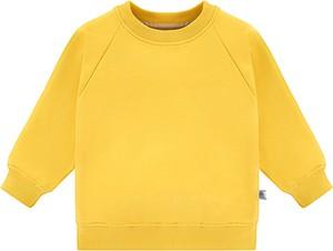 Bluza dziecięca Tuszyte