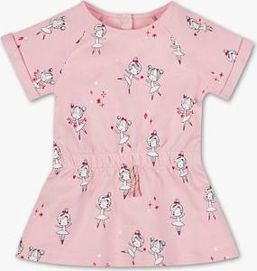 Sukienka dziewczęca Baby Club z bawełny