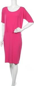 Sukienka Claudia Strater z długim rękawem prosta