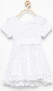 81ac173716 koronkowa sukienka reserved - stylowo i modnie z Allani