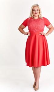 Czerwona sukienka Fokus z okrągłym dekoltem rozkloszowana z krótkim rękawem