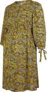 Esprit Sukienka ciążowa w kolorze oliwkowym