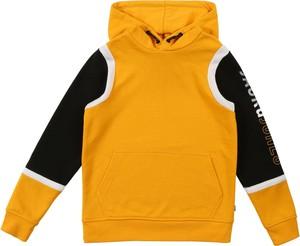 Żółta bluza dziecięca Jack & Jones Junior