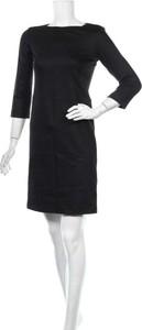 Sukienka Cyrillus z długim rękawem mini