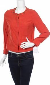 Czerwona kurtka Sag Harbor krótka w stylu casual