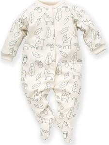 Odzież niemowlęca Pinokio dla chłopców