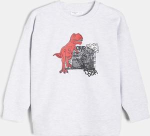 Bluza dziecięca Sinsay dla chłopców