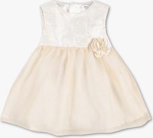 Sukienka dziewczęca Baby Club dla dziewczynek