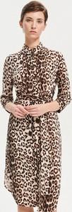 Brązowa sukienka Reserved w stylu casual z kołnierzykiem midi
