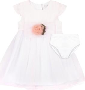 Różowa sukienka dziewczęca Guess