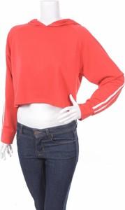 Czerwona bluza New Look w młodzieżowym stylu